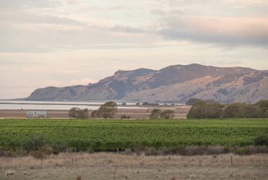 Clifford Bay New Zealand